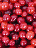 Cranberries. Background Royalty Free Stock Images