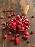 Cranberries. On a wooden background Stock Photography