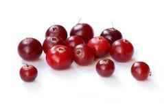 cranberries Fotografering för Bildbyråer