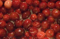 cranberries Royaltyfria Bilder