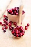 Cranberries Fotografia Royalty Free