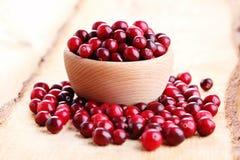 Cranberries Obraz Stock
