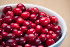 Cranberries obraz stock