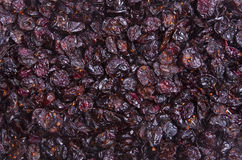 Cranberries Background Stock Images