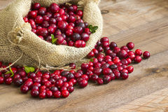 Cranberries in a bag Stock Photo