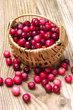 Cranberries with basket Stock Image