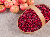 Cranberries in a basket on a fabric background and apples lying next Stock Photography