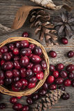 Cranberries in basket Royalty Free Stock Photos