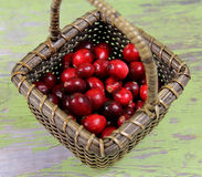 Cranberries. In a basket on green wooden background Stock Images
