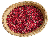 Cranberries. In a basket. Isolated on white stock photos