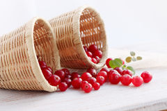 Cranberries in baskets Stock Photography