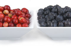 Cranberries and bilberries Royalty Free Stock Photography