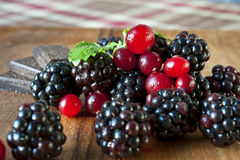 Cranberries and blackberries with mint and chocolate on wooden p. Cranberries and blackberries with mint leaf and chocolate on wooden plate/dish. Closeup Royalty Free Stock Images
