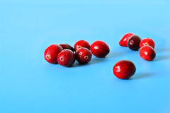 Cranberries on blue Stock Image