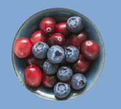 Cranberries and blueberries in blue Bowl Stock Photos
