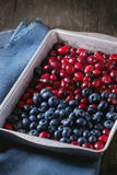 Cranberries and blueberries Stock Images