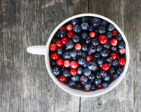 Cranberries and blueberries Stock Photos