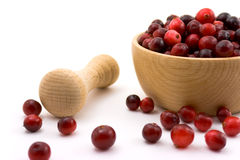 Cranberries in a bowl Stock Photos