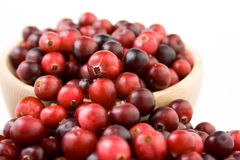 Cranberries in a bowl. Ripe cranberries in a wooden bowl Royalty Free Stock Images