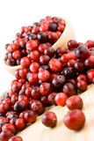 Cranberries in a bowl. Ripe cranberries in a wooden bowl Royalty Free Stock Photo
