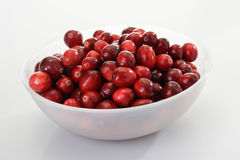 Cranberries in bowl Stock Image