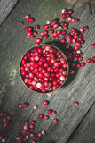Cranberries in a bowl Stock Images