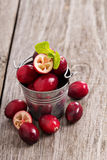 Cranberries in a bucket Stock Images