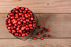 Cranberries in Bucket on Wood Table Stock Photo
