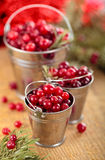 Cranberries in buckets. Royalty Free Stock Photography
