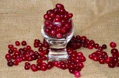 Cranberries on a burlap Royalty Free Stock Photos