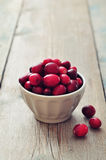 Cranberries in ceramic bowl Royalty Free Stock Photography