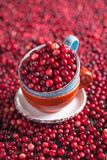 Cranberries in a ceramic mug Royalty Free Stock Photography