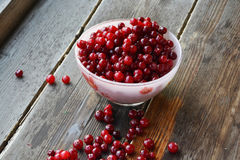 Cranberries. Close-up of cranberries in bowl, on wooden backround Stock Photography