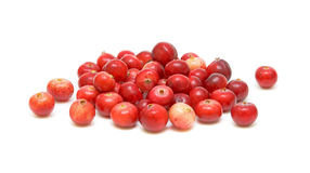 Cranberries closeup on white background. Ripe and juicy cranberry closeup on white background Stock Image