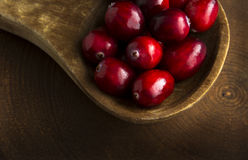 Cranberries in Closeup in Wooden Spoon Royalty Free Stock Images