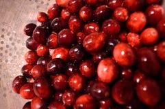 Cranberries in colander Stock Image