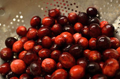 Cranberries in colander Royalty Free Stock Photography