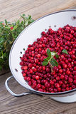 Cranberries in a colander Royalty Free Stock Photo