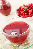 Cranberries and a cool drink Royalty Free Stock Images