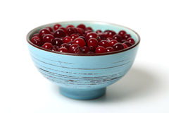Cranberries in dish Stock Images