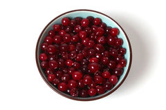 Cranberries in dish Stock Photography