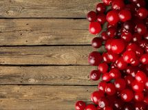 Cranberries. Frame Berry Fruit Fruit Berry Autumn Red stock photo