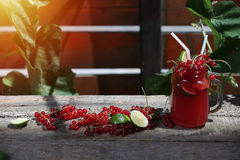 Cranberries fresh juice in the garden Royalty Free Stock Photo