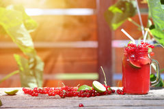 Cranberries fresh juice in the garden Royalty Free Stock Photography