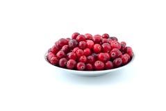 cranberries fyllde den mogna sauceren Royaltyfria Foton