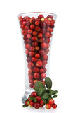Cranberries in glass Stock Photo