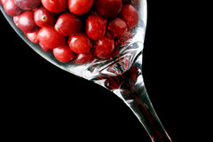 Cranberries in a glass Stock Images