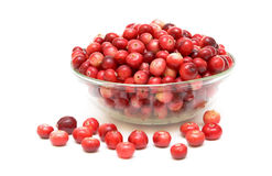 Cranberries in a glass bowl. Fresh, juicy cranberry closeup on white background Royalty Free Stock Photo