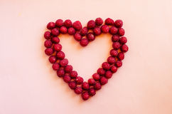 Cranberries heart Royalty Free Stock Photos