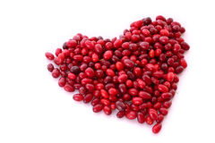 Cranberries in heart shape Stock Image